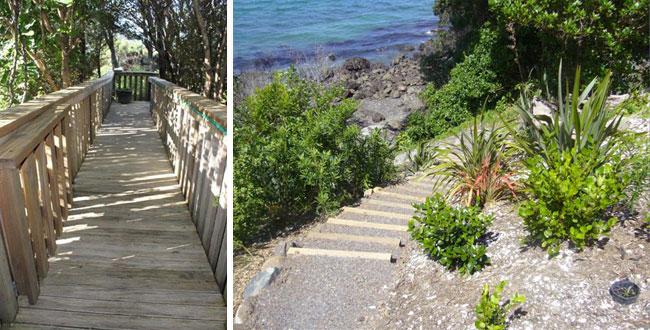 boardwalks railing and bush track by manaia excavators