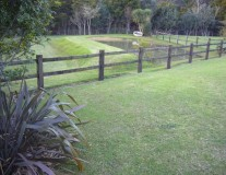 Pond and fencing