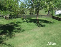 After-lawn-stage-3-600x450