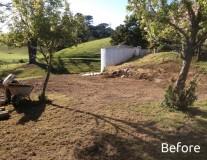 before-lawn-stage-1a-600x450