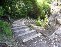 Steps in Bush